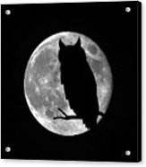 Owl Moon Acrylic Print
