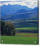 Owl Pass Uncompahgre National Forest Co Acrylic Print
