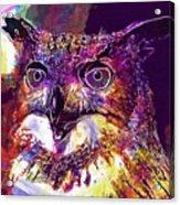 Owl The Female Eagle Owl Bird  Acrylic Print