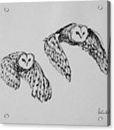 Owls In Flight Acrylic Print
