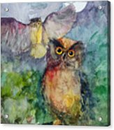 Owls In The Night... Acrylic Print