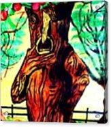 Oz Grumpy Apple Tree Acrylic Print by Jo-Ann Hayden