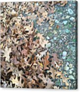 Ozark Autumn Acrylic Print