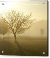 Ozarks Misty Golden Morning Sunrise Acrylic Print