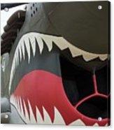 P-40 Warhawk - 2 Acrylic Print