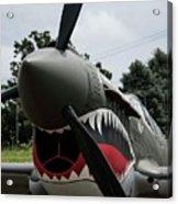 P - 40 Warhawk - 5 Acrylic Print