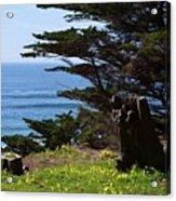 Pacific Beauty Acrylic Print