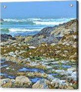 Pacific Coast Tide Pools Acrylic Print