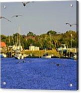 Paddle Boarders Vs Birds Acrylic Print