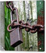Padlocked Gate Acrylic Print