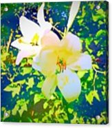 Paint Me In Water Color Said The Lilies To The Artist Acrylic Print