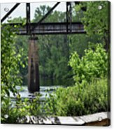 Painted Congaree Four Acrylic Print