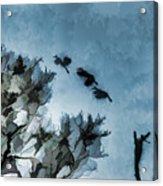 Painted Cranes Acrylic Print