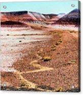 Painted Desert 0319 Acrylic Print