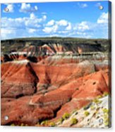 Painted Desert Acrylic Print by Barry Shaffer