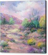 Painted Desert Acrylic Print