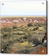 Painted Desert Winter 0571 Acrylic Print