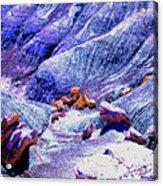 Painted Desert With Petrified Wood - Arizona Acrylic Print