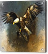 Painted Eagle Acrylic Print