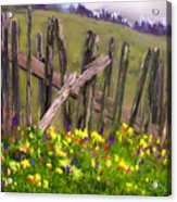 Painted Fence Acrylic Print