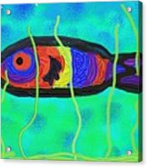 Painted Fish Acrylic Print