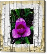 Painted Flower With Peeling Effect Acrylic Print