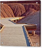 Painted Hills Boardwalk Acrylic Print