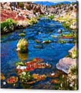 Painted Hot Creek Springs Acrylic Print