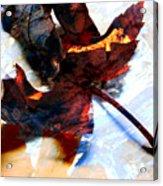 Painted Leaf Series 2 Acrylic Print