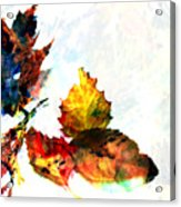 Painted Leaves Abstract 2 Acrylic Print