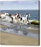 Painted Ocean Acrylic Print