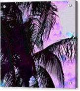 Painted Palms 4 Acrylic Print