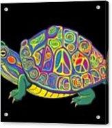 Painted Peace Turtle Too Acrylic Print