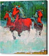 Painted Ponies -surf Run Acrylic Print