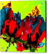 Painted Poppies Acrylic Print