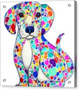 Painted Puppy Acrylic Print by Nick Gustafson