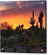 Painted Skies Of The Sonoran Desert Acrylic Print