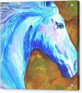 Painted Stallion Acrylic Print