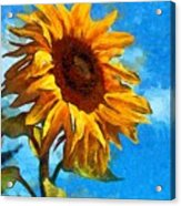 Painted Sunflower Acrylic Print