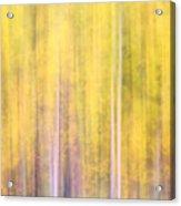 Painted Trees IIi Acrylic Print