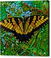 Painted Yellow Swallowtail Acrylic Print