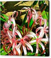 Painterly Effects Acrylic Print