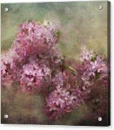 Painterly Lilac Blossom Photograph Acrylic Print