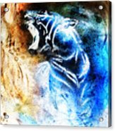 Painting Abstract Tiger Collage On Color Space Background Wildlife Animals. Acrylic Print
