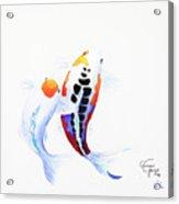 Pair Of Koi Acrylic Print