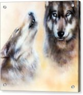 Pair Of Wolves Acrylic Print