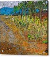 Paisaje - Chile - Campo 1 Acrylic Print