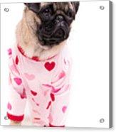 Pajama Party Acrylic Print