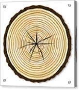 Pale Log End Acrylic Print