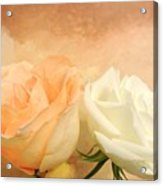 Pale Peach And White Roses Acrylic Print